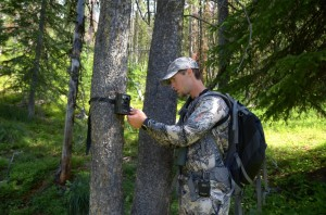Summer Trail Camera Tips