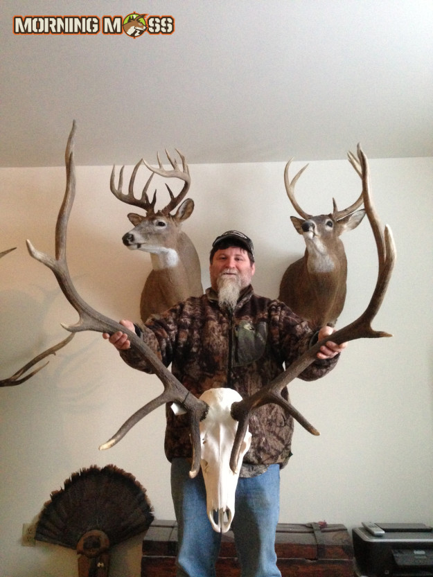 Giant Elk & Deer Mounts