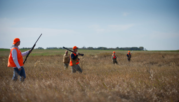 Pheasant Hunting Tips