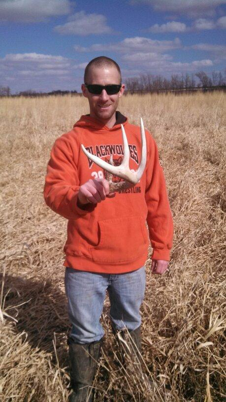 shed antler photo