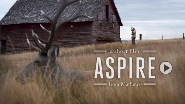 Mathews Aspire Film