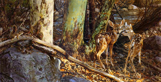 8 Pros and Cons of Deer Hunting