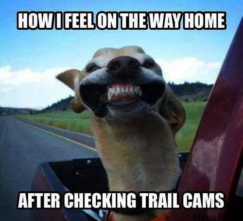 Funny Hunting Pictures