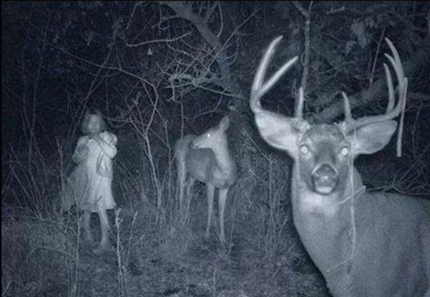 Haunted Trail Cam