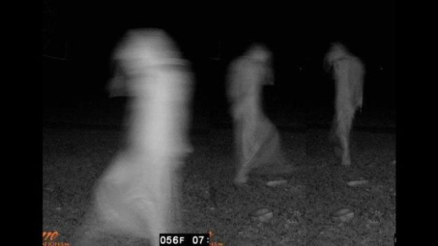 Ghost trail cam pic