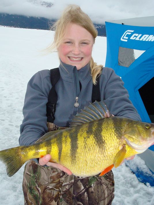 world record perch