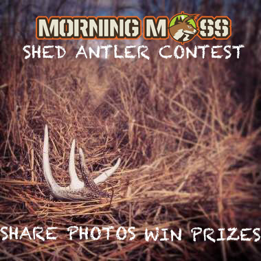 shed antler photo contest