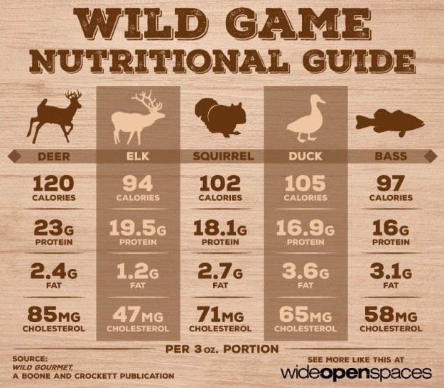 Is wild game meat good for you?