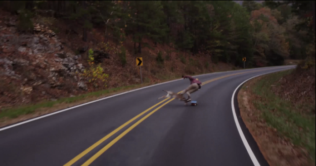 longboarder-gets-hit-by-deer