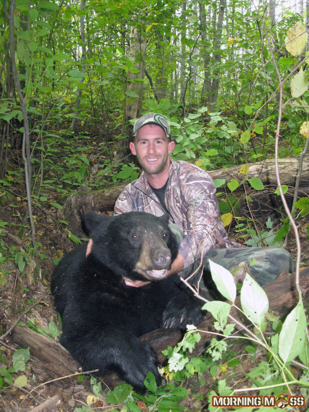 Big Bear Killed in WI