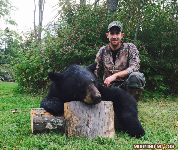Huge Bear Killed