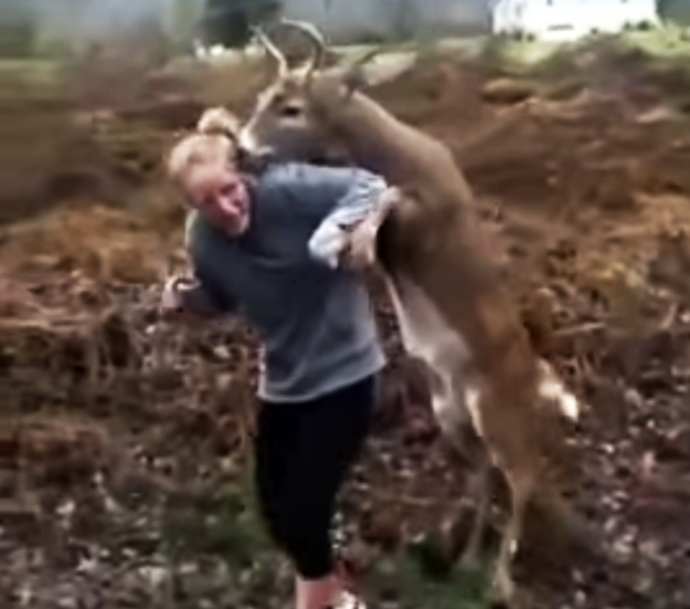 deer-tries-to-mate-human-girl