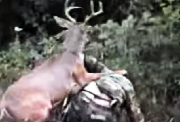 whitetail-deer-attacks-hunter