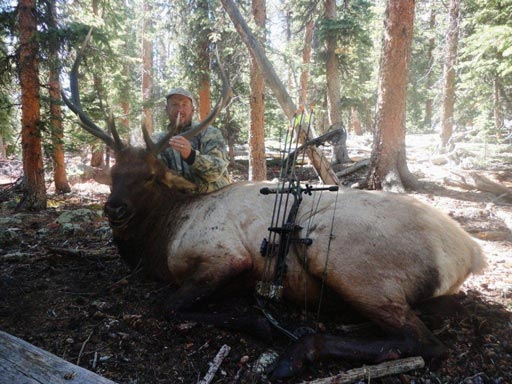 high country elk