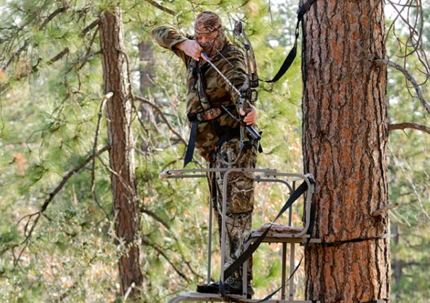 5 tips to be a better bowhunter