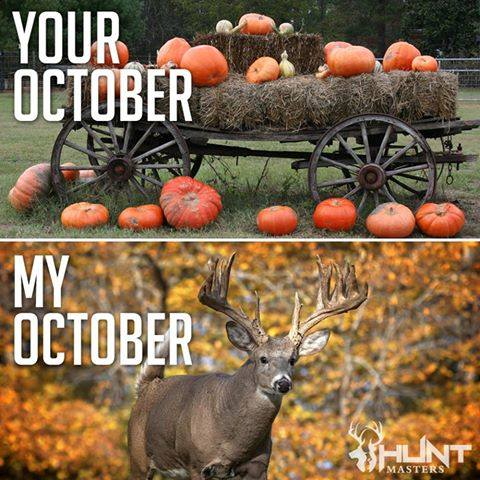 october pictures